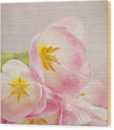 Inner Beauty - Pink Tulips Wood Print