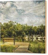 Inner Harbor View Wood Print