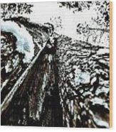 Inner View Wood Print