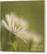 Innocence - Original Wood Print