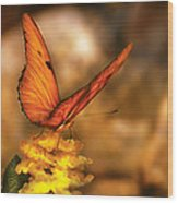 Insect - Butterfly - Just A Bit Of Orange  Wood Print