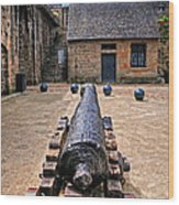 Inside A French Fort Wood Print