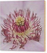 Inside The Flower Wood Print