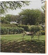 Inside The Garden Of 5 Senses In Delhi Wood Print