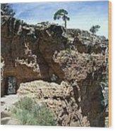 Inside The Grand Canyon Wood Print