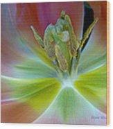 Inside The Tulip Wood Print