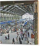 Inside Train Station, Nice, France Wood Print