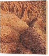Interesting Desert Landscape Wood Print