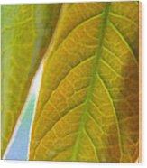Interesting Leaves - Digital Painting Effect Wood Print