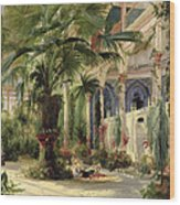 Interior Of The Palm House At Potsdam Wood Print