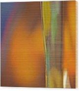 Internal Light Wood Print