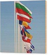 International Flags Nisyros Wood Print