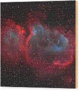 Interstellar Embryo  Ic 1848, The  Soul Wood Print