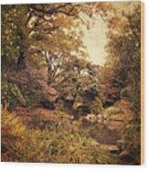 Intimate Landscape Wood Print