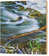 Intimate With River Wood Print