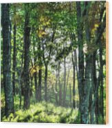 Into The Light I - Blue Ridge Parkway Wood Print