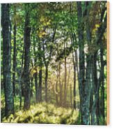 Into The Light II - Blue Ridge Parkway Wood Print