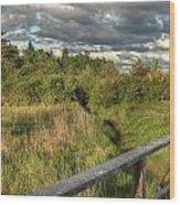 Into The Marsh Wood Print