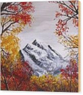 Into The Mountains Wood Print