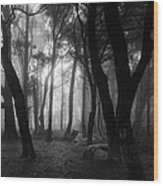 Into The Mystic Wood Print