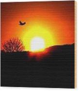 Into The Sun Wood Print
