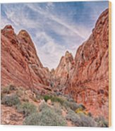 Into Valley Of Fire Wood Print