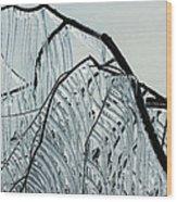 Intricate Ice Curtains Wood Print