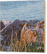 Inverness Beach Rocks  Wood Print