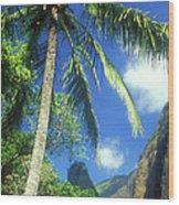 Io Valley Palm And Needle Maui Hawaii Wood Print