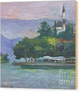 Ioannina Lake Wood Print by George Siaba