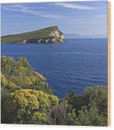 Ionian Sea Coast Albania Wood Print