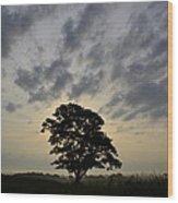 Iowa Farm Country Wood Print