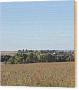 Iowa Fields Wood Print