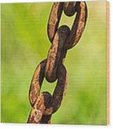 iPhone Case - Rusty Chain Wood Print by Alexander Senin