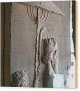 Iran Ancient Umbrella Wood Print