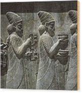 Iran. Persepolis. Apadana Or Audience Wood Print