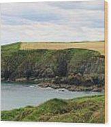 Ireland Coast Panorama Wood Print