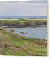 Ireland Coastline Panorama Wood Print