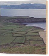 Ireland Emerald Isle Fields By Jrr Wood Print