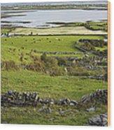 Ireland Farm Wood Print