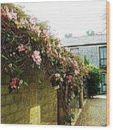 Ireland Floral Vine-topped Brick Wall Wood Print
