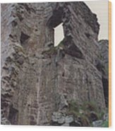 Ireland Minard Castle Ruins By Jrr Wood Print