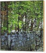 Ireland Stone Wall And Trees Wood Print