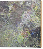 Iridescence Wood Print