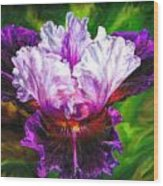 Iridescent Iris Wood Print