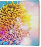 Iridescent Sun Wood Print