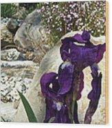 Iris 14 Wood Print
