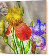 Iris #18 Wood Print