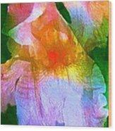 Iris 53 Wood Print by Pamela Cooper