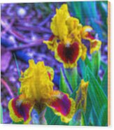 Iris #58 Wood Print